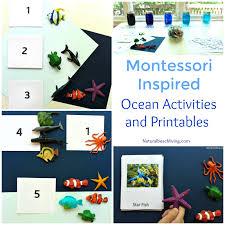 Montessori Theme Ocean Preschool Activities Printables The Best Way To Learn Zones