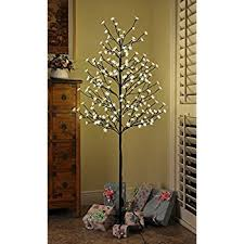 3ft Pre Lit Blossom Christmas Tree by Amazon Com Lightshare Led Blossom Tree 6 Feet Warm White Home