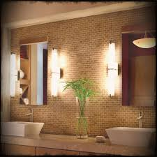 Plants For Bathrooms With No Light by Plants For Bathroom With No Windows Bathroom Trends 2017 2018