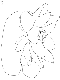 India Lotus Countries Coloring Pages