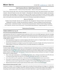 Executive Resume Writing Service (Director, VP, C-Level) Easy Resume Examples Fresh Unique Areas Expertise How To Write A College Student Resume With Examples 10 Chemistry Skills Proposal Sample Professional Senior Marketing Executive Templates Why Recruiters Hate The Functional Format Jobscan Blog Best Finance Manager Example Livecareer Describe In Your Cv Warehouse Operative Myperfectcv Infographic Template Venngage 7 Ways Improve Your Physical Therapist Skills Section 2019 Guide On For 50 Auto Mechanic Mplate Example Job Description