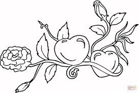 Coloring Pages Of Hearts With Wings And Roses 3