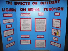 Free Science Fair Projects Experiments Display