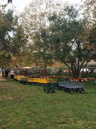 Pumpkin Patch Irvine Park Hours by Irvine Park Railroad Pumpkin Patch A Must Visit This Fall Any Tots