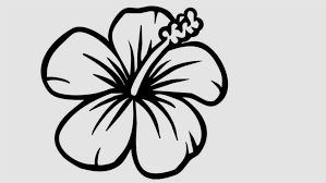 Fresh Gallery Of Easy Pictures To Draw Flowers How A Flower