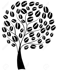 1037x1300 Coffee Tree With Beans Royalty Free Cliparts Vectors And