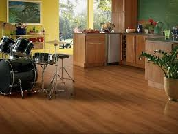 Armstrong Laminate Flooring Cleaning Instructions by 55 Best Armstrong Laminate Flooring Images On Pinterest Georgia