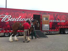 Clydesdale Budweiser In Petoskey, MI - Melissa DiVietri Budweiser Truck Stock Images 40 Photos Ubers Selfdriving Startup Otto Makes Its First Delivery Budweiser Truck And Trailer Pack V20 Fs15 Farming Simulator Truck New York City Usa Photo Royalty Free This Is For Semi Trucks And Ottos Success Vehicle Wrap Gallery Examples Hauls Across Colorado In Selfdriving Hauls Across With Just Delivered 500 Beers Now Brews Its Us Beer Using 100 Renewable Energy Clyddales Boarding The Ss Badger 1