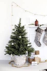 Best Kinds Of Christmas Trees by Best 25 Christmas Tree Basket Ideas On Pinterest Christmas Tree