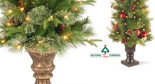 National Tree Company Offers A Line Of Entrance Trees That Can Be Used Either Indoors Or Out