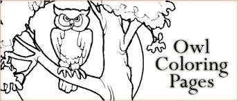 Read More 4 Comments Thanksgiving Coloring Pages Animal Jr Latest Post