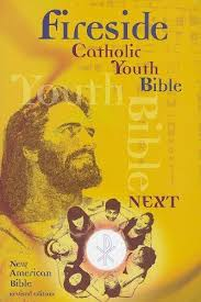 Fireside Catholic Youth Bible NABRE Softcover