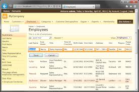 Default Grid1 View Template For Employees In Code On Time Web Application