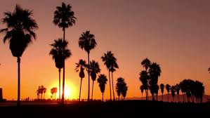 Visually Similar Footage Hd0024Sunset Beach 07 Silhouette Venice California