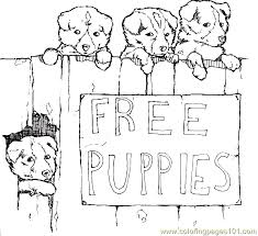 Dog Puppy Coloring Page 07