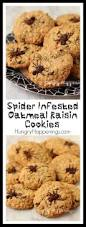 Rice Krispie Halloween Treats Spiders by Spider Infested Oatmeal Raisin Cookies Hungry Happenings