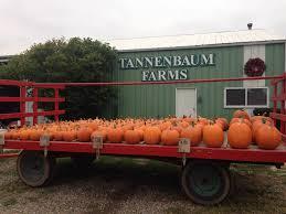 Tannenbaum Christmas Tree Farm Michigan by Tannenbaum Farms Home Facebook