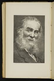Walt Whitman The Wound Dresser Poem Analysis by Iii Out From Behind This Mask Walt Whitman At The Lilly The
