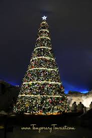 Delancey Street Christmas Trees Hours by 26 Best Christmas At Seaworld Images On Pinterest Seaworld