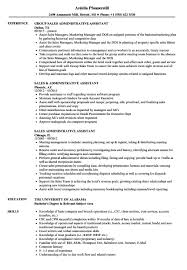 Resume Templates: Sales Samples Velvet Jobs. Resume Sample Of ... Executive Assistant Resume Sample Complete Guide 20 Examples Assistant Samples Best Administrative Medical Beautiful Example Free Admin Rumes Created By Pros Myperfectresume For Human Rources Lovely 1213 Administrative Resume Sample Loginnelkrivercom 10 Office Format Elegant Book Of Valid For Unique