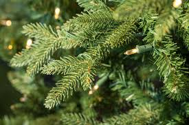 Artificial Christmas Tree 7ft Pre Lit by 7ft Pre Lit Avalon Spruce Feel Real Artificial Christmas Tree