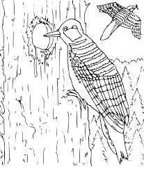 8 Pics Of Large Hard Animal Coloring Pages