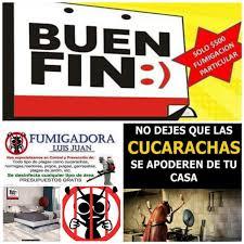 Mata Cucarachas Chinches Alacranes Pulgas Insecticida 1 Lt