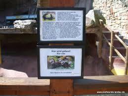 freundeskreis zoo landau e v