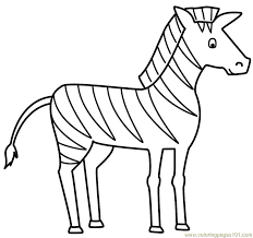 Coloring Pages Zebra Mammals