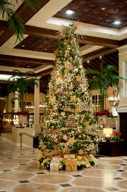 Leyland Cypress Christmas Tree Farm by Christmas At The King And Prince Georgia Holiday Vacation The
