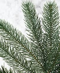 Pre Lit Multicolor Christmas Tree Canada by Park City Pine Snap Pre Lit Christmas Tree Tree Classics