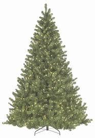 oregon fir prelit tree betty s house