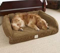Eddie Bauer Dog Beds by Costco Dog Bed Igloo Dog Bed Deluxe Great Size X Bolster Dog Bed