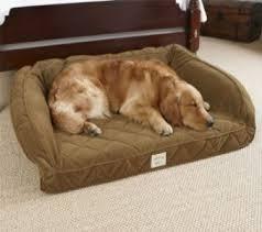 Kirkland Dog Beds by Costco Dog Beds Serta Dog Bed Costco Dog Beds Inside Cool Costco