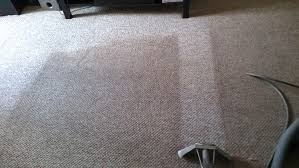 professional carpet cleaning upholstery cleaning tile cleaning
