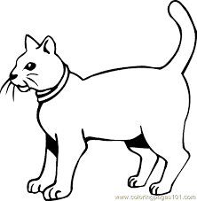 Cat Coloring Page 25
