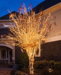 How to Wrap a Tree with Lights Christmas Lights Etc Blog