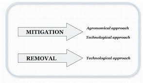 Figure 1 Strategies To Reduce Acrylamide Levels In Food