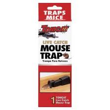 tom cat mouse trap tomcat single catch live trap bl33538 the home depot
