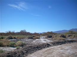 Tule Springs Fossil Beds National Monument by Tule Springs Wikipedia