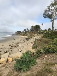 100 Santa Barbara Butterfly Beach Anything But Ordinary On Twitter Cycled From