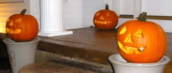 Preserve Carved Pumpkin Forever by Mayer Brothers Apple Cider Donuts And Halloween Realistic