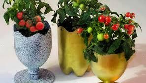 Unusual Flower Pot From Plastic Bottle