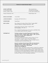 Government Job Resume Format Fresh Examples For Category