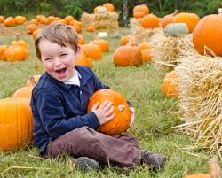 Lakeview Pumpkin Patch by Pumpkin Patch Package For 4 People At Tlv Tree Farm In Glenelg