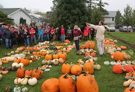 Types Of Pumpkins For Baking by This Minnesota Garden Is Full Of 263 Varieties Of Squash And