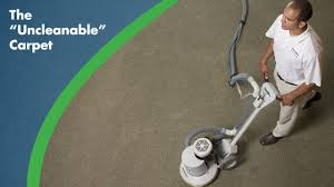 Carpet Cleaning, The Natural Way! | Prestige Chem-Dry
