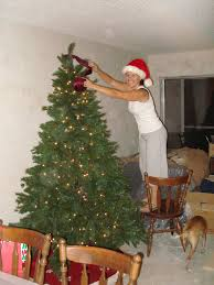 Christmas Tree Preservative Aspirin by Aspirin For Christmas Tree Beatiful Tree