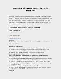 Sample Resume For Government Employment Remarkable Templates