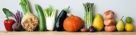 vegetarische rezepte für kinder küchengötter